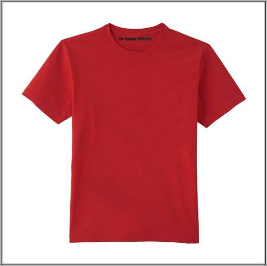 Egyptian Cotton Blank T-shirts - Clothing-Fashion - Blank T-Shirts ... 4175003bde6